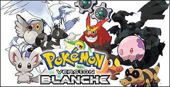 pokemon-version-blanche-nintendo-ds-00c.jpg